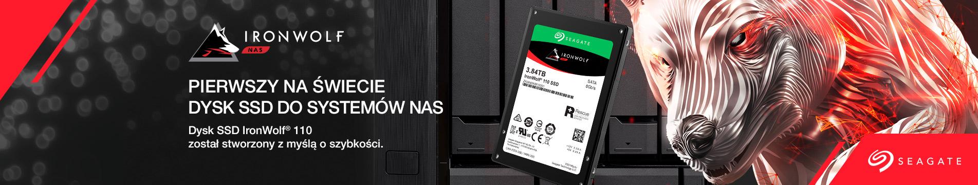 IRON WOLF SSD